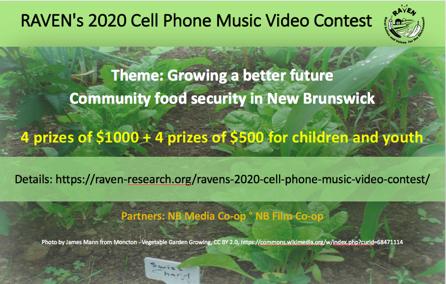 RAVEN's 2020 Cell Phone Music Video Contest launched!